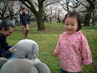 hanami-girl.jpg