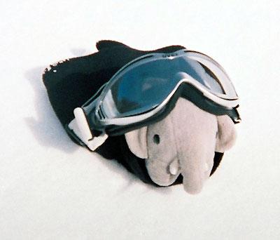 zoupi-ski4.jpg